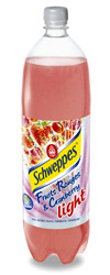 Schweppes fruits rouges et cramberry light